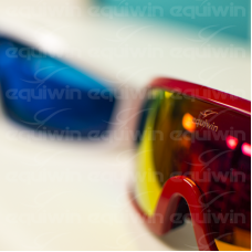 Antiparras Importadas Equiwin ' Turf Goggle ' Pack X 12u